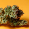 high_way_Paul Gosselin