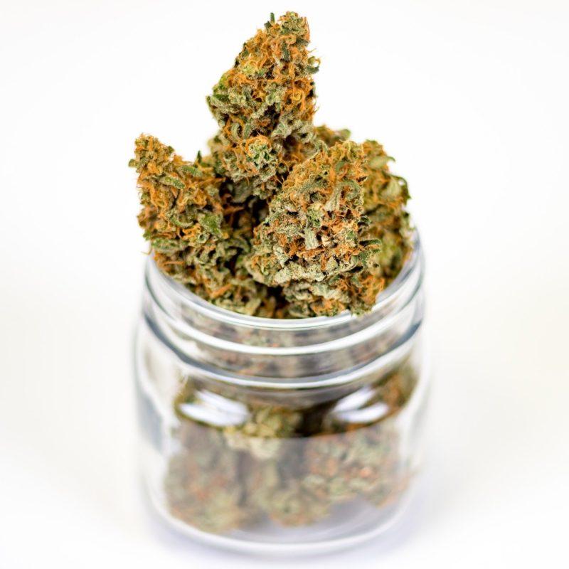 curare la cannabis